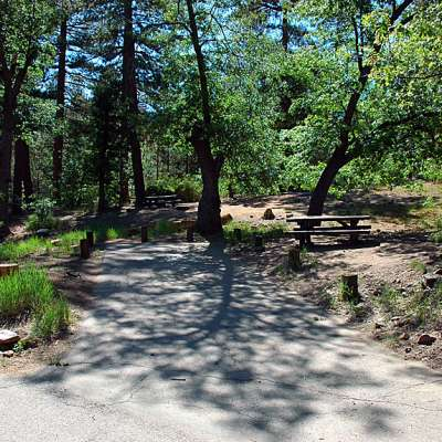 Pineknot Family Campground