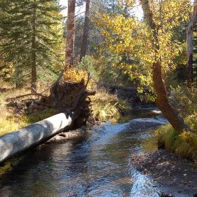 Cottonwood Creek Campground