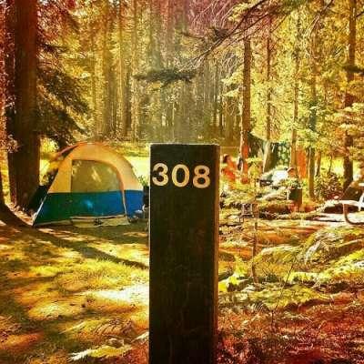 Crane Flat Campground