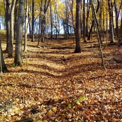 Nerstrand Big Woods Campground