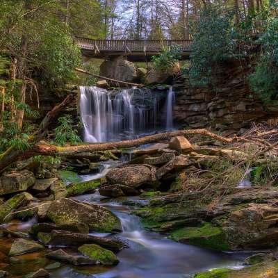 Blackwater Falls Campground