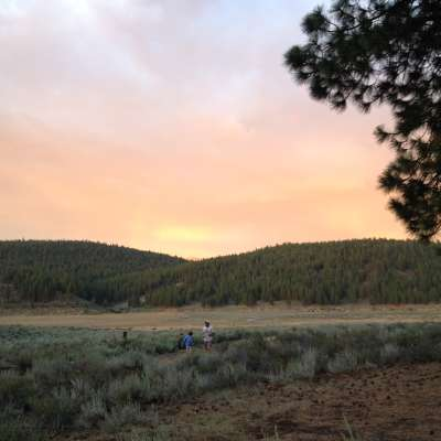 Alpine Meadow Campground