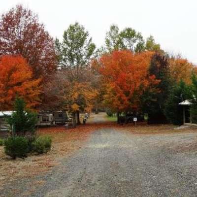 Crawford's Camp (primitive sites)