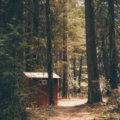 Sasquatch Meadows