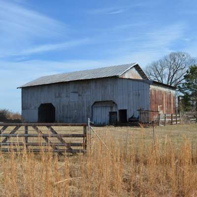 Modern Harvest Farms- The Barn Yard
