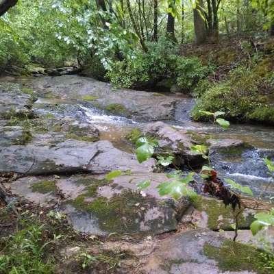 Creekside Camp