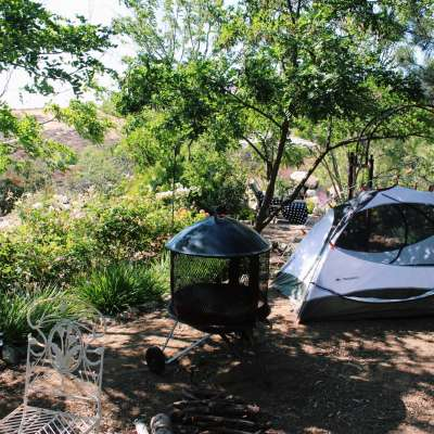 Wine Country Camping