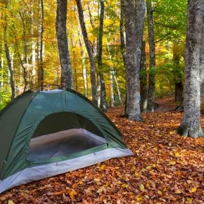 Primitive Creek Camping