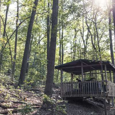 Hike In Platform  Camping