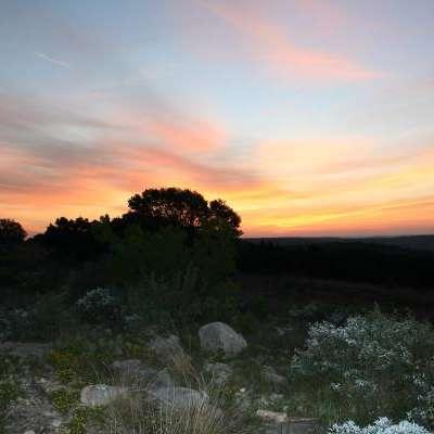 Llano Springs Ranch