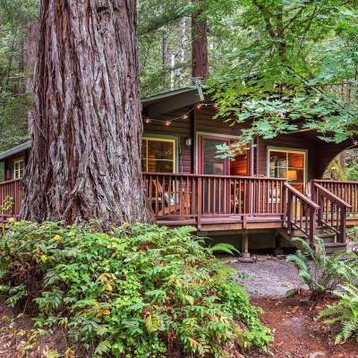 The Old Cazadero Cabin