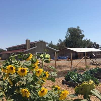 Authentic Farm Retreat