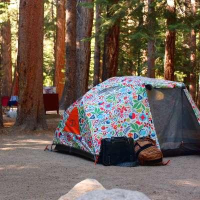 Big Bend Campground