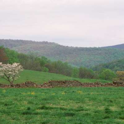 Over Jordan Farm