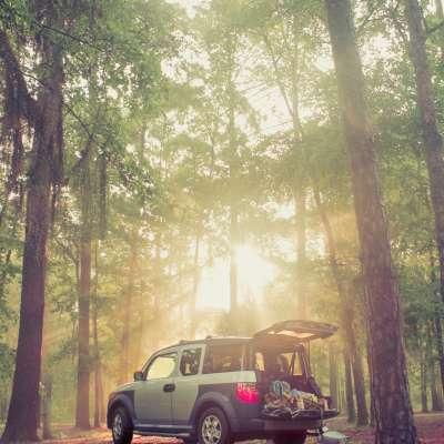Florence Marina State Park Campground
