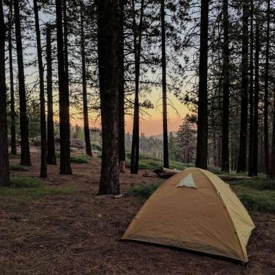 McGill Campground