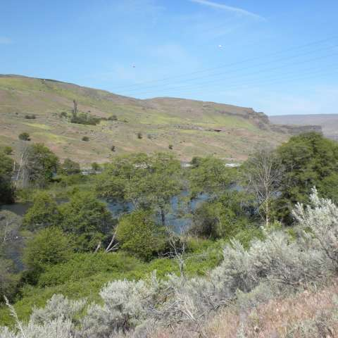 Deschutes River Campground