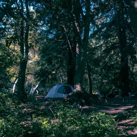 Pfeiffer Big Sur Campground
