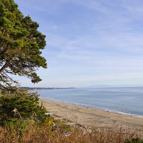 Seacliff State Beach Campground