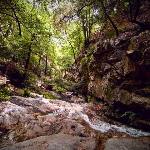 Fall Creek Trail Camp