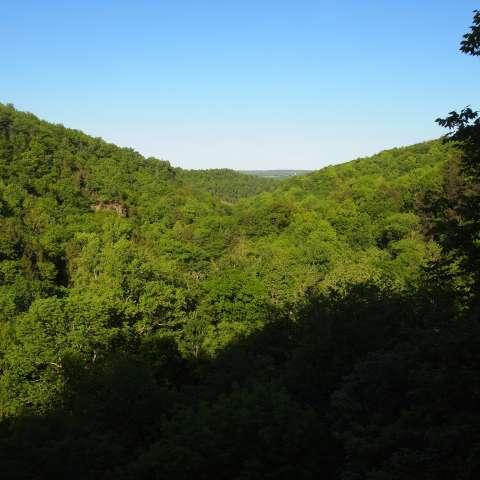 Robert H. Treman State Park Campground