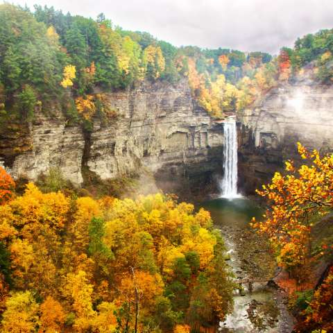 Taughannock Falls State Park Campground