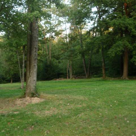 Chapman Campground
