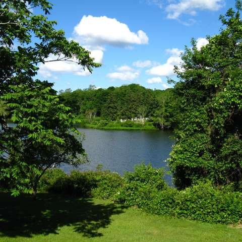 Shawme-Crowell Campground