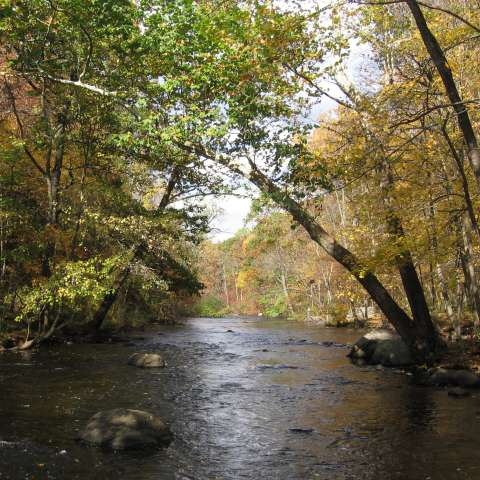 Stephens State Campground