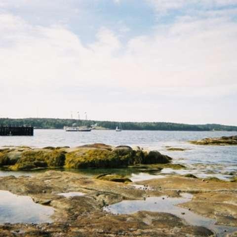 Swan Island Campground