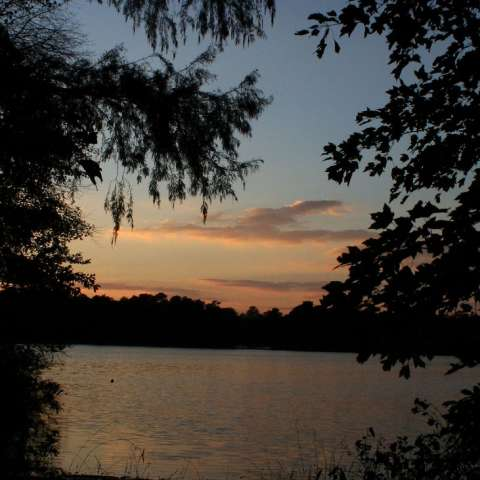 Trap Pond Campground