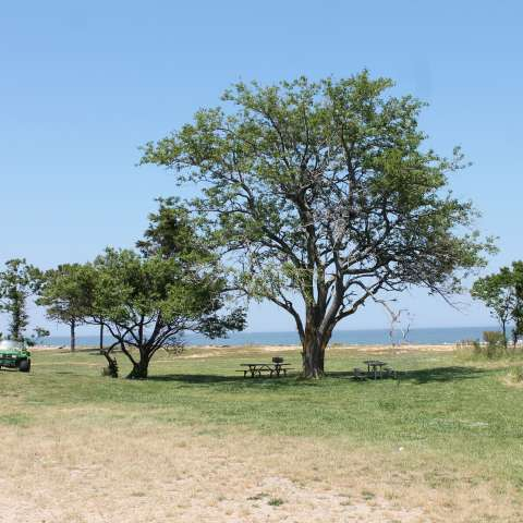 Point Lookout Campground