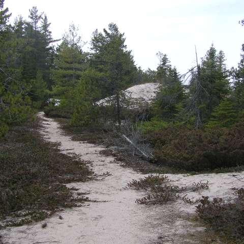 Hoeft Campground