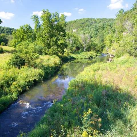 Cedar Hill and Goosberry Glen