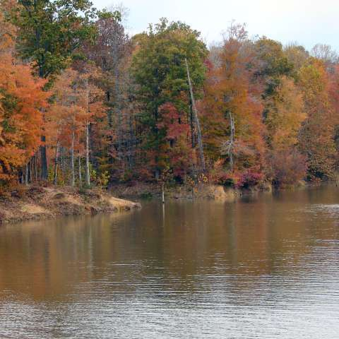 Patoka Lake Campground