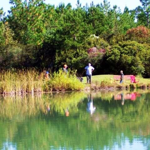 Honey Hill Recreation Area