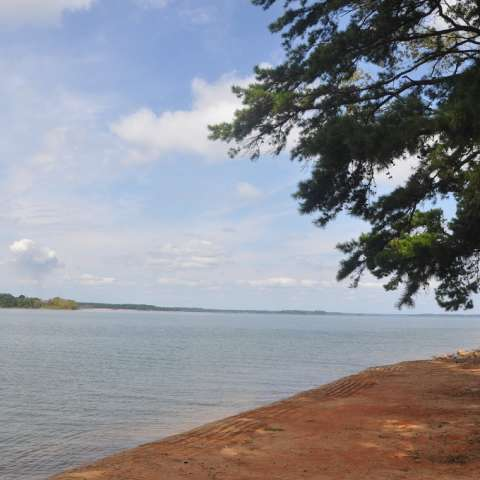 Oconee Point Campground