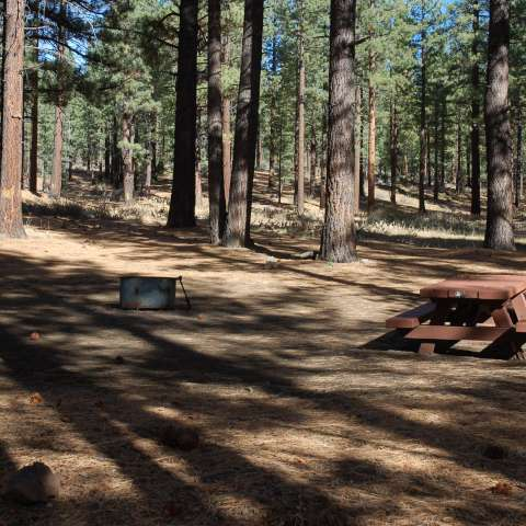 Boca Springs Campground