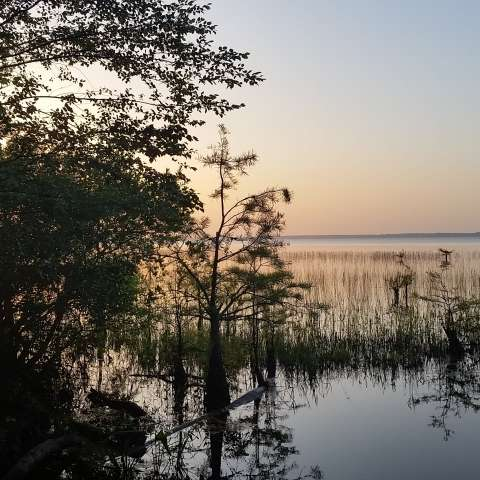 Lake Waccamaw Campground