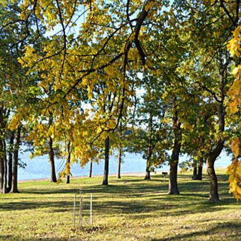 Pickerel Lake Campground