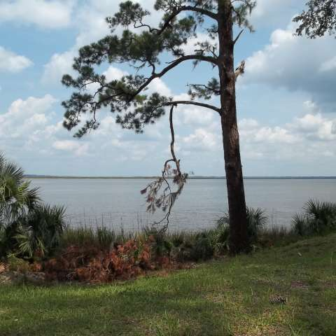 Fort McAllister State Park Campground