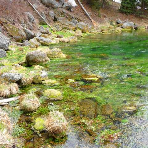 Pine Bar Recreation Site Campground