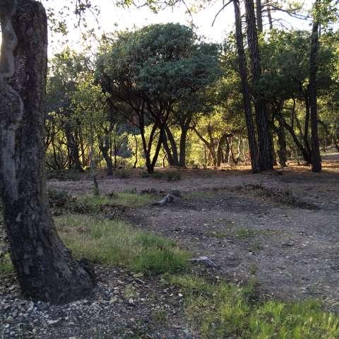 Figueroa Campground