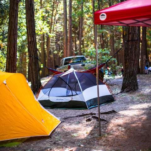 Belknap Campground