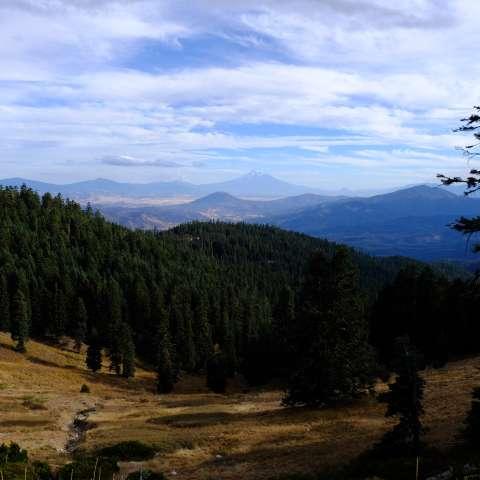 Mt. Ashland Campground