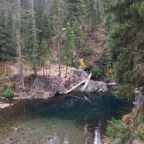 Salmon La Sac Campground