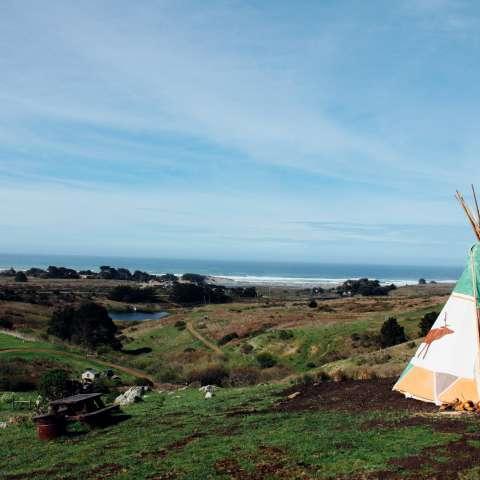 Calla Lily Canvas Platform Tent