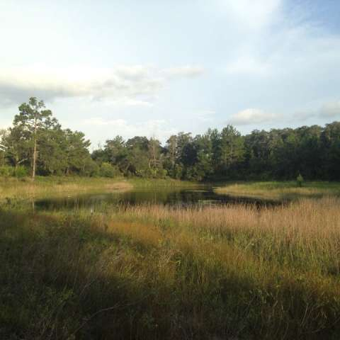 Hidden Pond Campground
