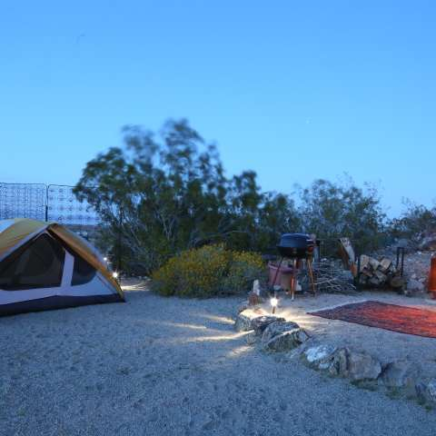 Joshua Tree Gypsy Camp