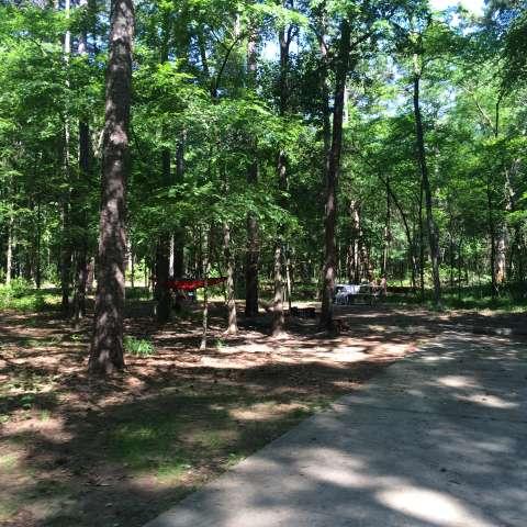 Lake Bob Sandlin Primitive Campground